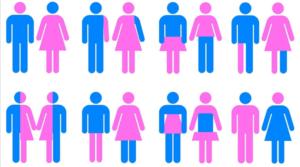 Transgênero. Pessoa trans.