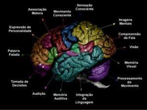 Avaliação Neuropsicológica Psicólogo Especializado USP